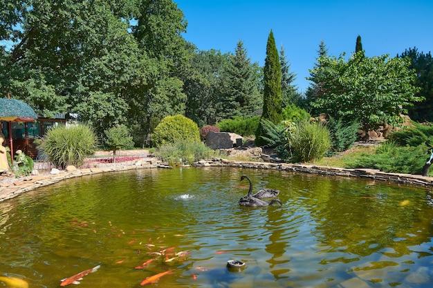 池の上の2つの黒い白鳥 Premium写真