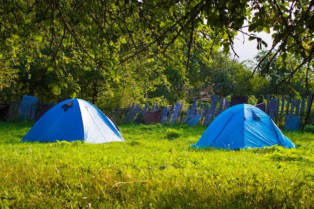 庭、草、木、自然にある2つの青いキャンプ。ジョージア。キャンプシーン。