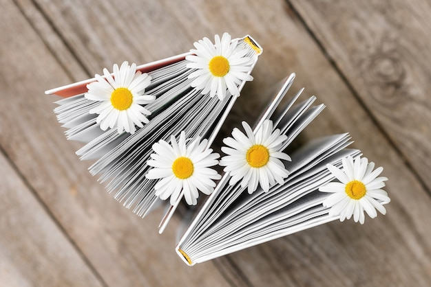 Two books with daisies between the pages