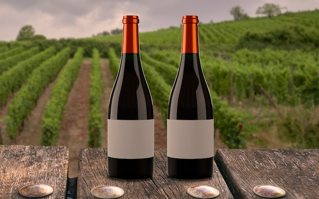 Two bottles of wine at the vineyard