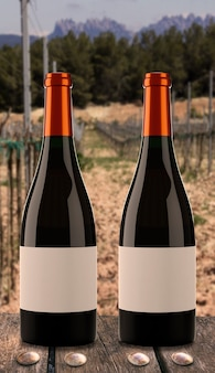 Two bottles of wine with vineyard background.