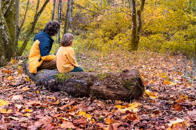 秋の森の中を長い散歩をした後、木の幹に座って休んでいる二人の少年。野生の公園の美しい秋。背面図。一緒に時間を過ごす兄弟たち。