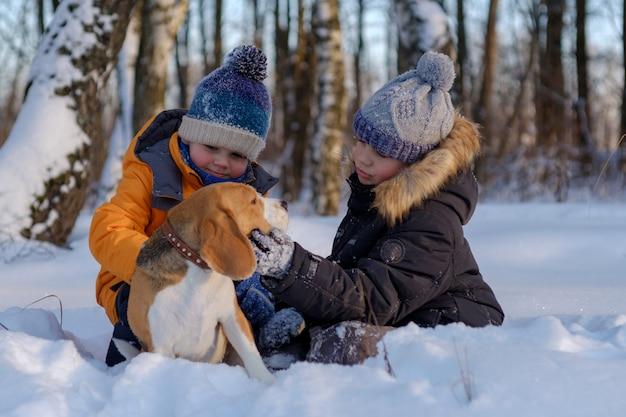 冬の森を歩く2人の男の子とビーグル犬