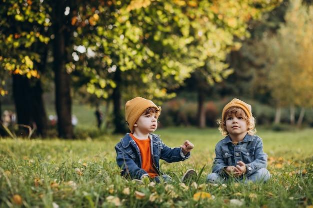 木の下の草の上に座っている2人の男の子の兄弟