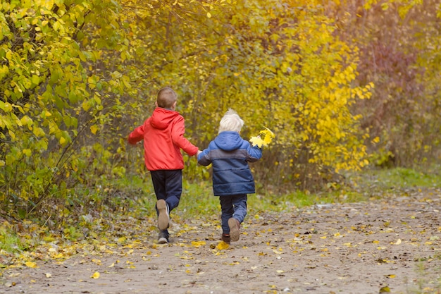 秋の公園で歩く2人の男の子