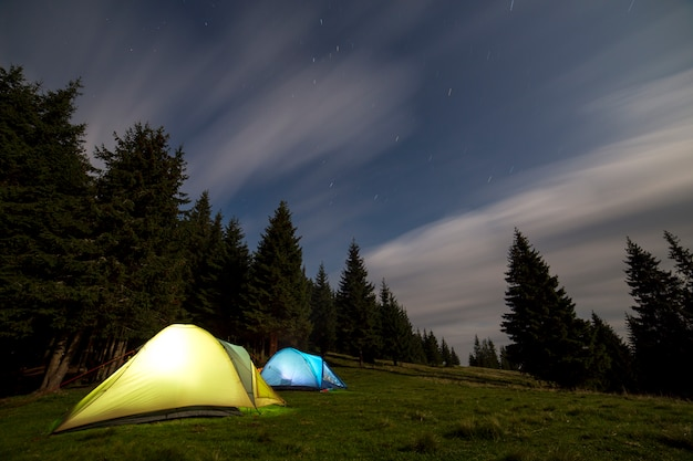 Two brightly lit tourist tents on green grassy forest clearing among tall pine trees on clear dark blue starry sky