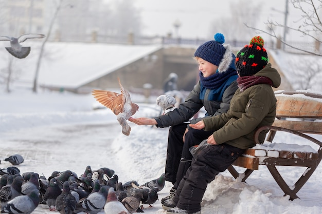 Two brothers are feeding birds in park in winter.