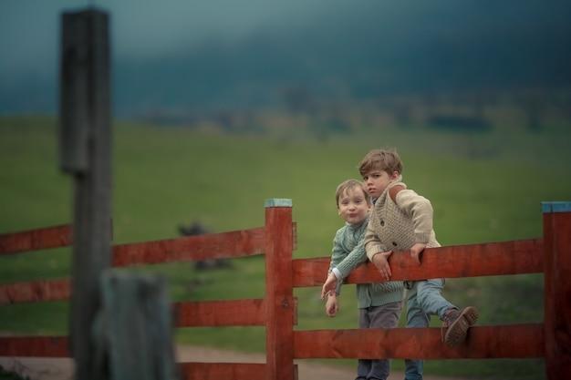 緑の野原に対して木製のフェンスの牧場に座っている少年の2人の兄弟