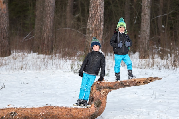 Two brothers in the winter forest