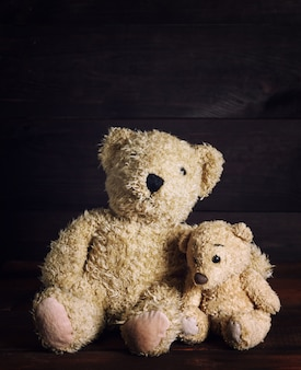 Two brown soft teddy bears are sitting