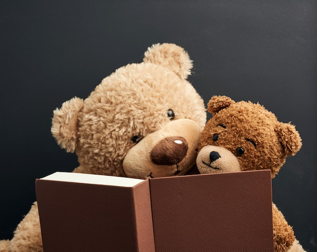 Two brown teddy bears are sitting with a book on a black space