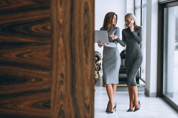 Two business woman with computer