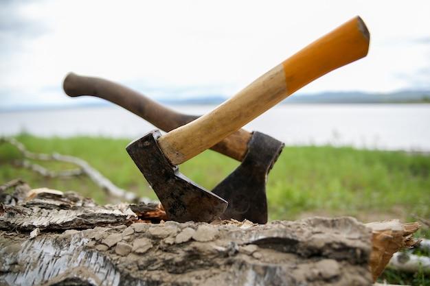 Два походных топора застряли в стволе срубленного дерева