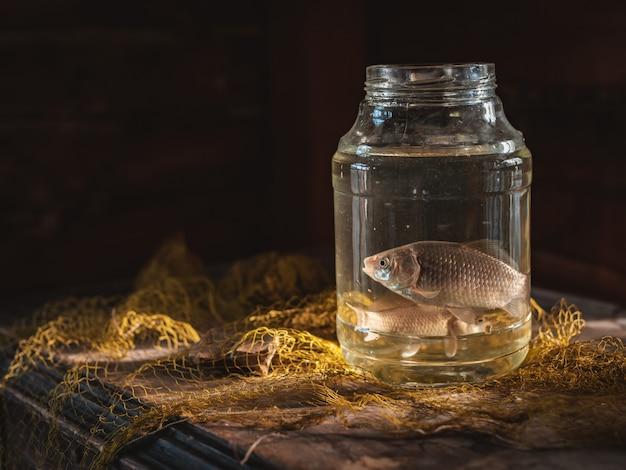 釣りネットとテーブルの上のガラスの瓶に2匹の鯉魚。釣り静物。