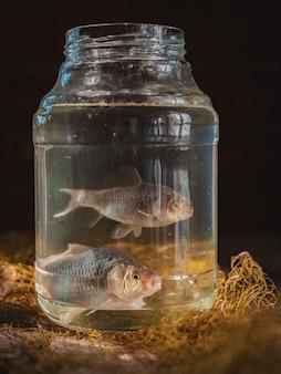 釣りネットとテーブルの上のガラスの瓶に2匹の鯉魚。