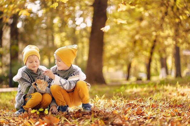 秋には2人の子供が公園で遊んでいます。二人の兄弟が落ち葉を集めます。コピースペース。