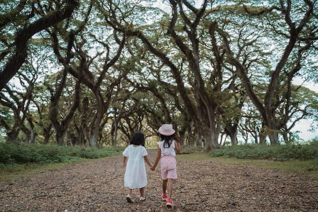 Двое детей уходят между тенистым деревом