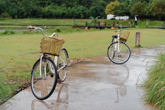 緑豊かな庭園の濡れた小道に2台のクラシックな自転車が停車します。ロマンチックなカップル