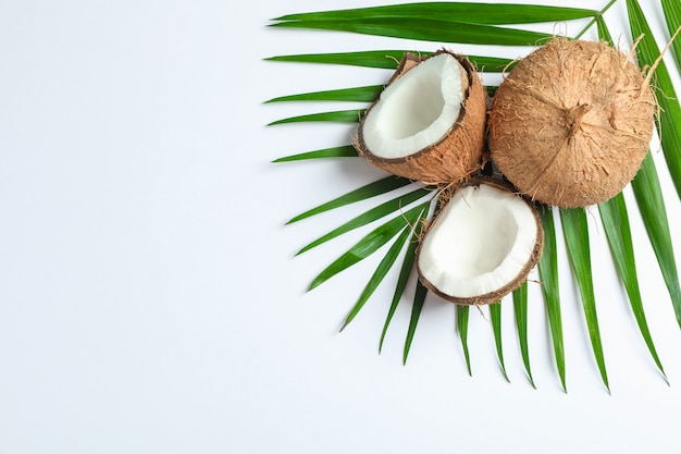 Two coconut one of which split with palm branch on white
