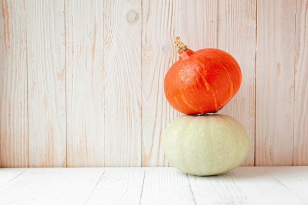 Two colorful different pumpkins in front of wooden wall rustic style