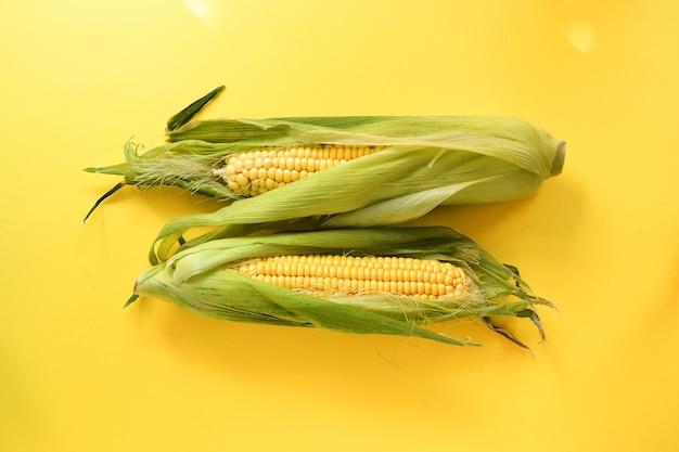 黄色の背景に2つのトウモロコシ最小限の食品コンセプト上面図