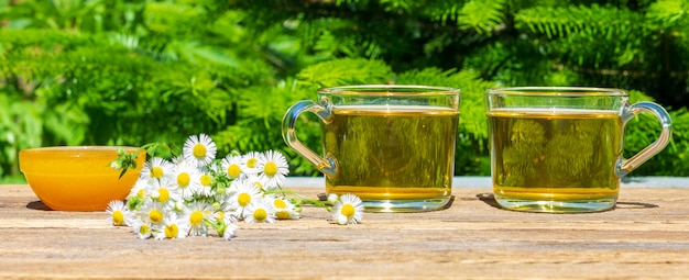 Two cups of green chamomile tea, honey in a bowl and a bunch of camomile on the table close-up outdoors on a sunny summer day