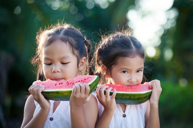 スイカの新鮮な果物を食べる2つのかわいいアジアの小さな子供の女の子