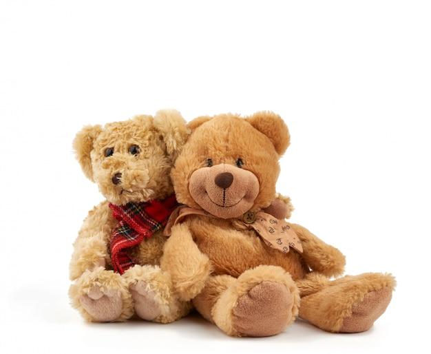 Две милые кудрявые коричневые плюшевые мишки, концепция поддержки и дружбы