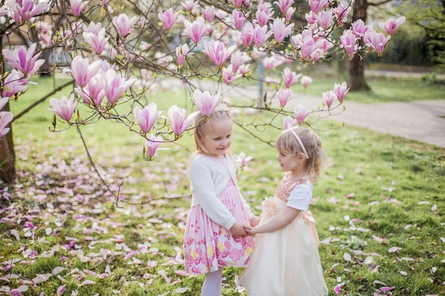 Two cute little blonde girls of 3 years old are playing in the park near a blossoming magnolia.