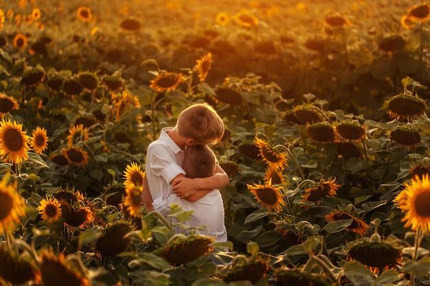 Two cute sibling boys hugging and having fun sunflowers field.