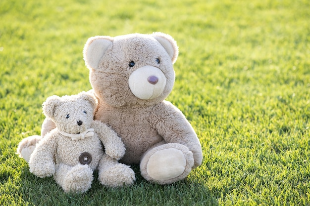 Two cute teddy bear toys hugging together on green grass in summer.