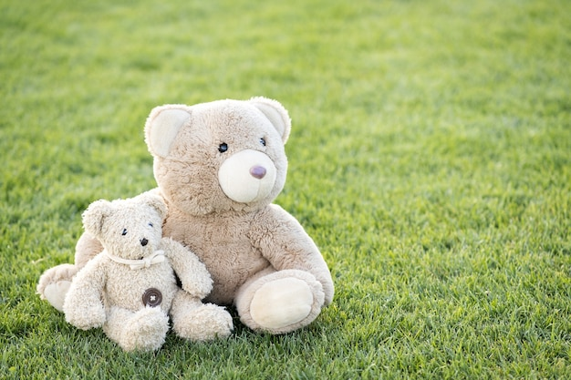 Two cute teddy bear toys sitting together on green grass in summer.