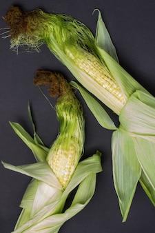葉とトウモロコシの絹とトウモロコシの2つの耳。黒の背景。フラットレイ