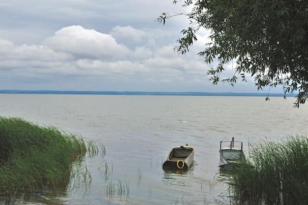 草に覆われた海岸近くの2つの空のボート。