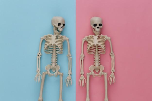 핑크 블루 파스텔에 두 개의 가짜 해골. 할로윈 장식, 무서운 테마