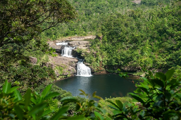 Two falls in the middle of the green jungle at iriomote island swimming hole tropical vegetation