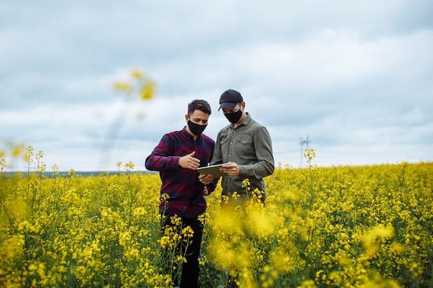 咲く菜種畑の真ん中に、タブレットを手にしたマスクをした2人の農民が立っている