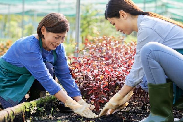 庭で働く2人の農民