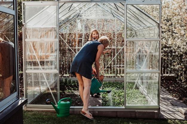 55세의 두 여성 정원사가 온실에서 식물에 물을 주고 있습니다. 그녀는 플라스틱 녹색 물뿌리개를 들고 있습니다.