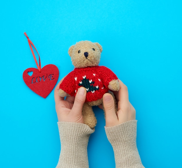 Two female hands hold a small brown toy teddy bear on a blue background