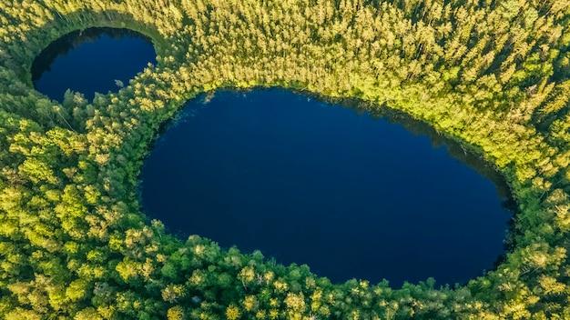 木々に囲まれた2つの森の湖-信じられないほど美しい空中写真風景緑の森
