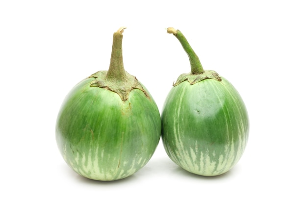 격리 된 흰색 배경에 두 개의 신선한 녹색 가지