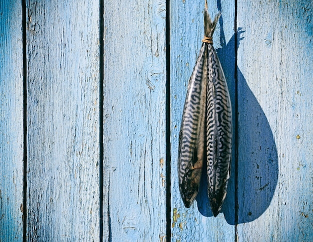 Two fresh mackerel hanging on a rope