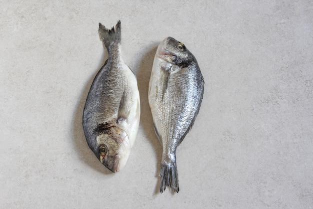 회색 배경 복사 공간 상단 보기에 있는 두 개의 신선한 생 바다 유기농 황새 또는 도미 프리미엄 사진