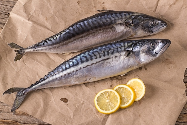 Two freshly frozen mackerels on wrapping paper with lemon wedges