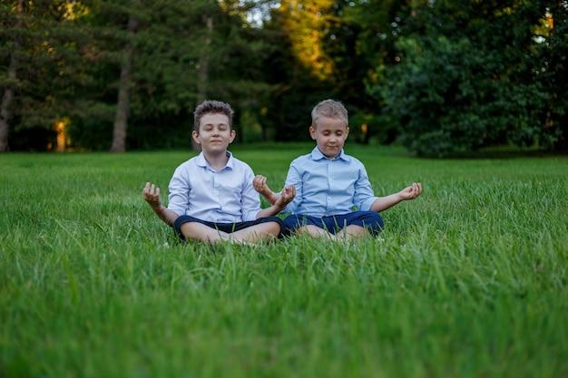 두 친구가 녹색 초원을 배경으로 연꽃 자세로 명상하고 있습니다.