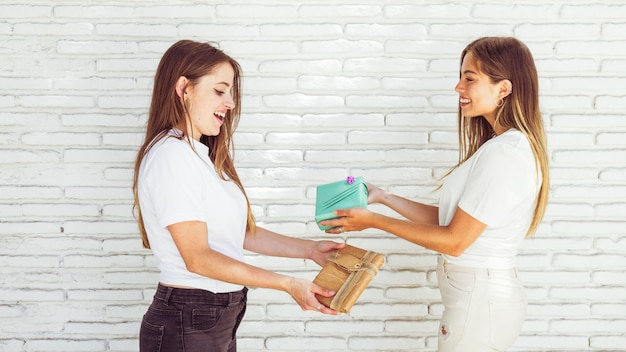 Two friends giving friendship day gift to each other