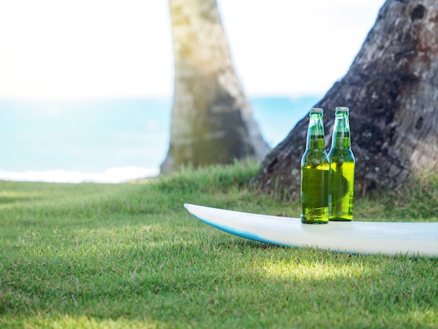 Two full bottles of beer are on the surfboard.  green grass and ocean shore.