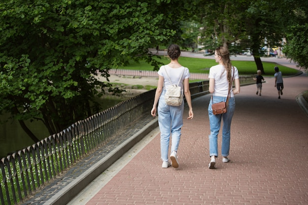 Two girlfriends go to alley of the park. students in the summer walk in the park. back view