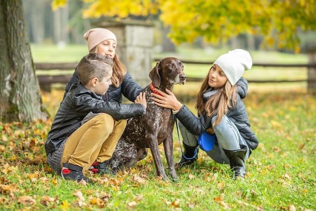 두 소녀와 소년은 공원에서 화려한 가을 날 갈색 개를 쓰다듬어줍니다.